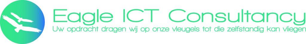 Logo Eagle ICT Consultancy